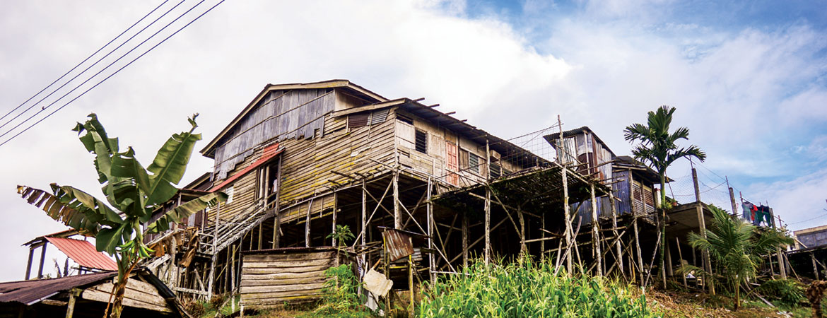 HISTORY AND ARCHITECTURE OF THE LONGHOUSE