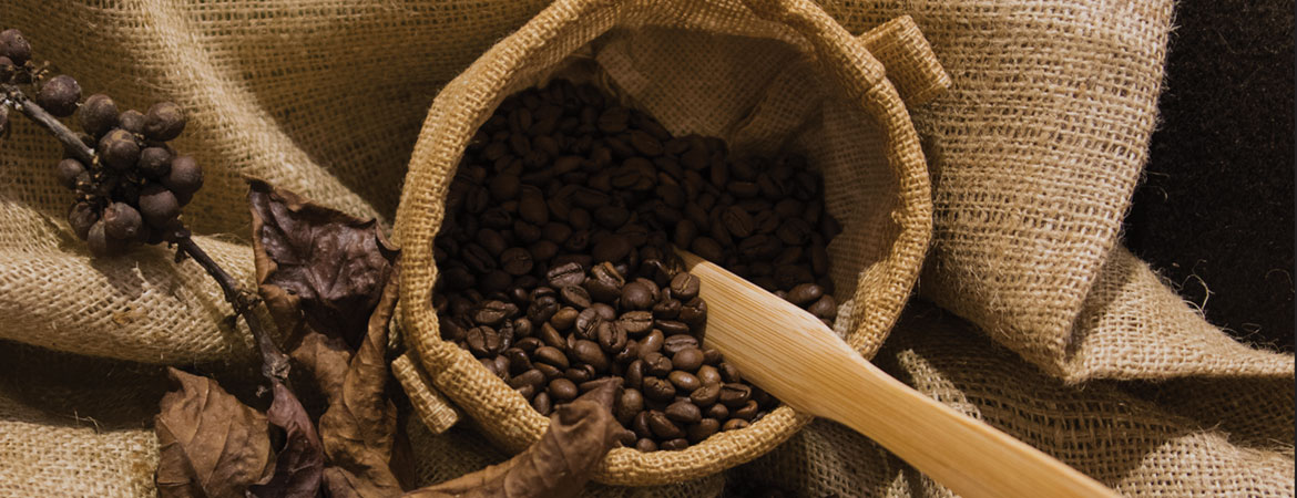 Awakening of the Sarawak Coffee